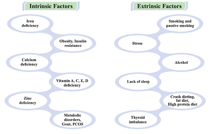 Hair Loss Factors